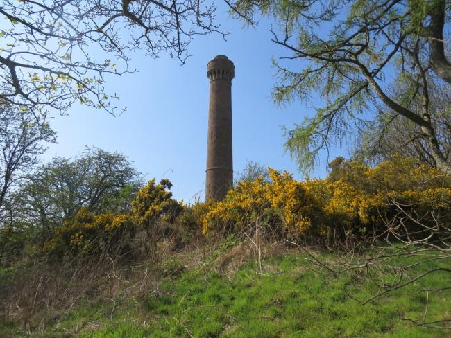 The Hopetoun Monument will turn blue and pink today (Tuesday). Copyright John Ferguson and licensed for reuse under this Creative Commons Licence.