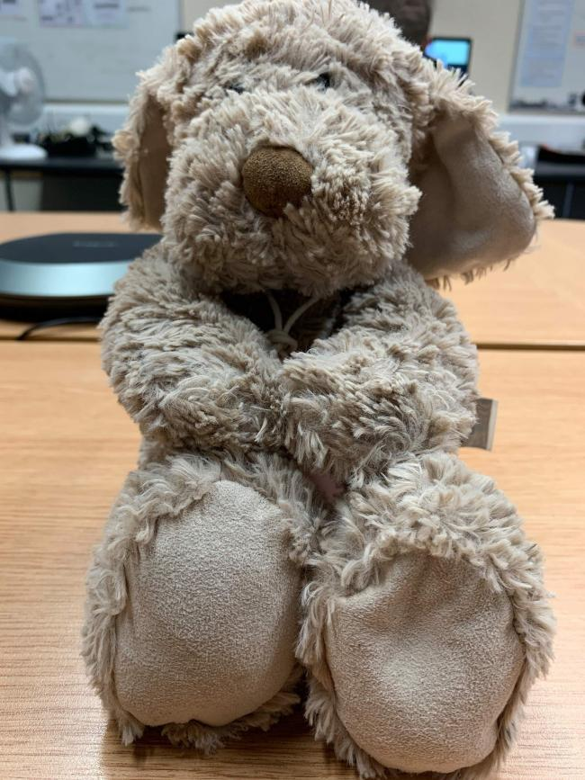 The teddy bear police found in Musselburgh
