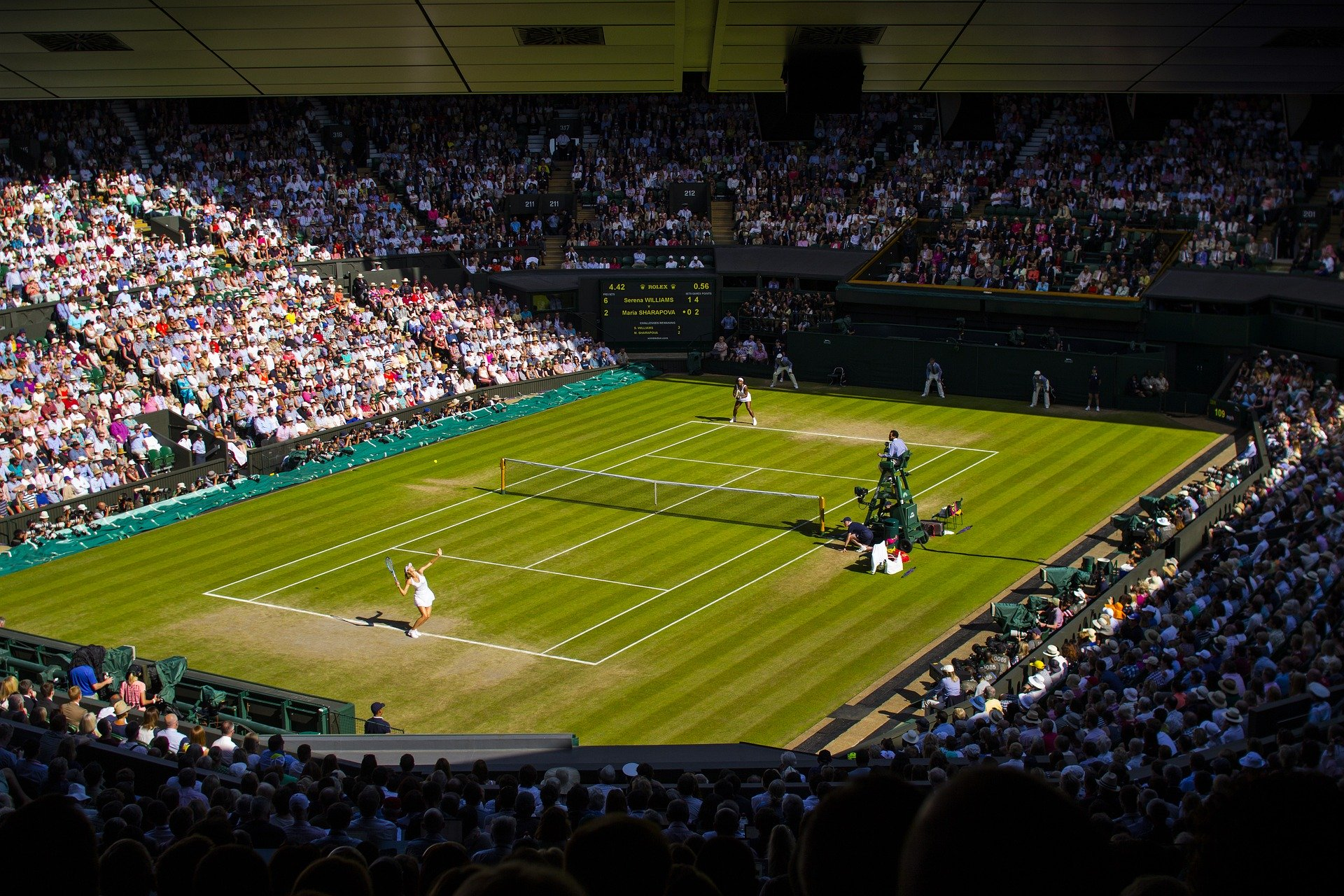 Wimbledon organisers issue statement on tennis tournament's future amid Covid-19 concerns