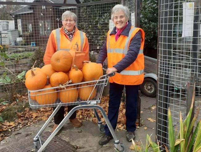 Through the project, pumpkins were grown and donated to Cockenzie Primary School