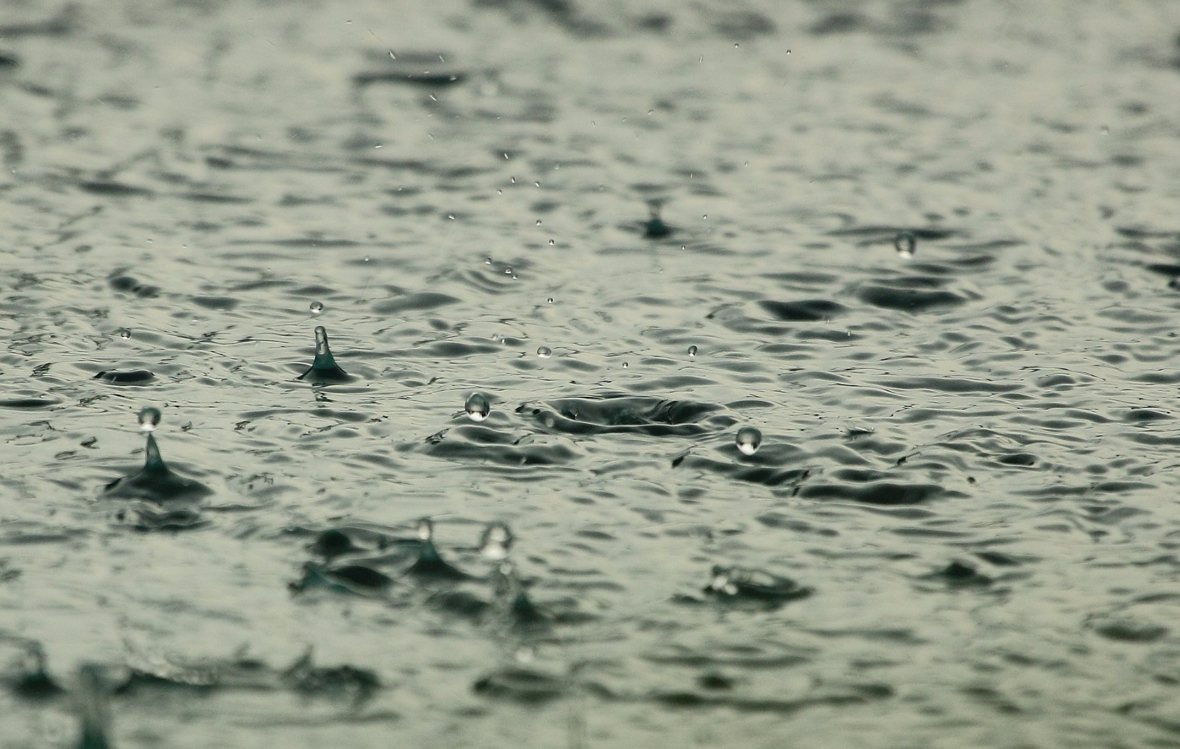 Torrential rain is forecast for East Lothian on Saturday