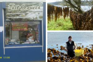Isle of Bute fisherman opens UK's first ever SEAWEED shop