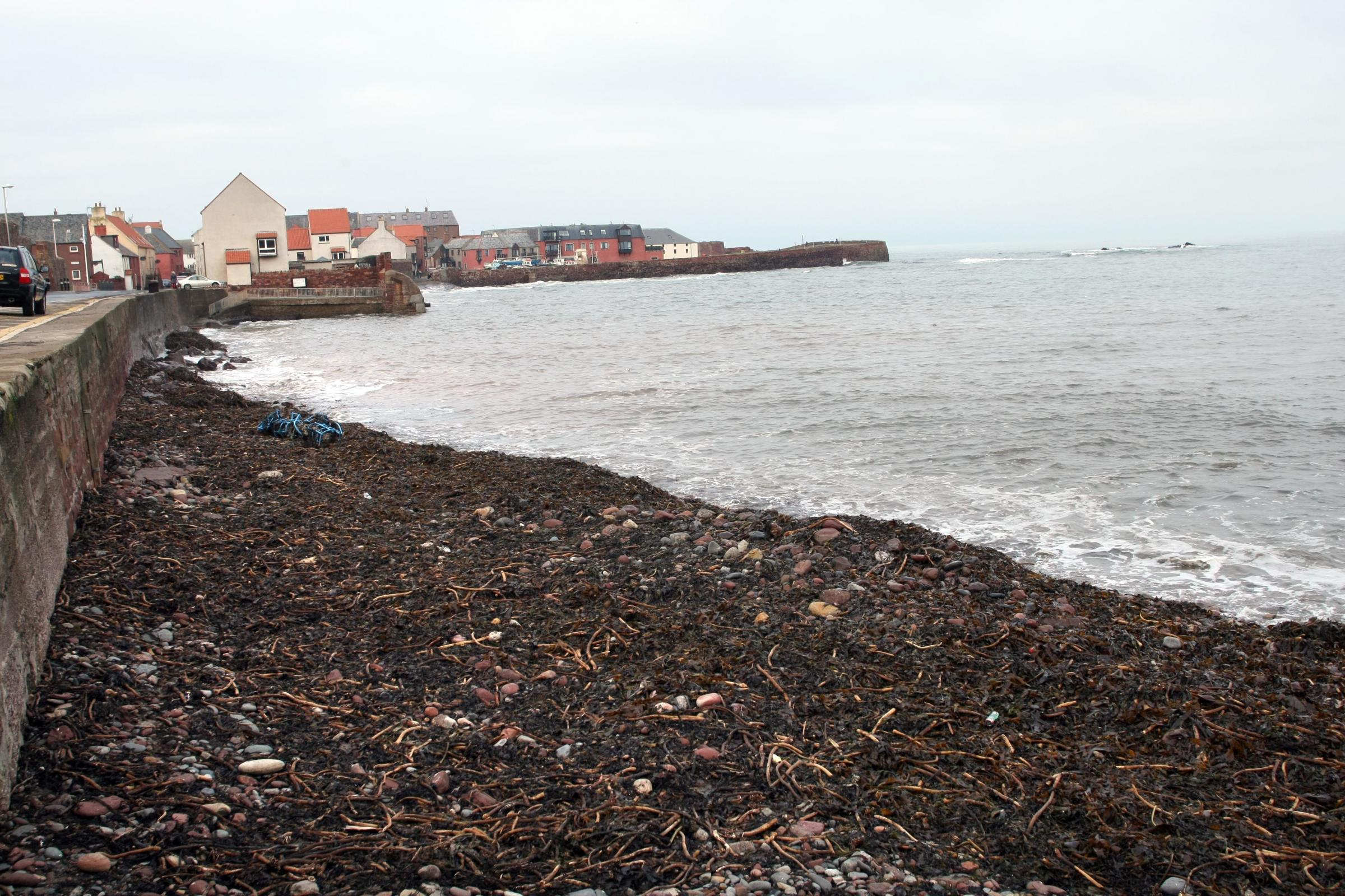 Work to reinvigorate Dunbar's East Beach is being weighed up by East Lothian Council's planning department