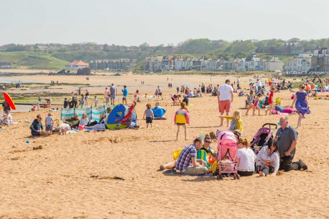 North Berwick East Beach could become a dog-free zone
