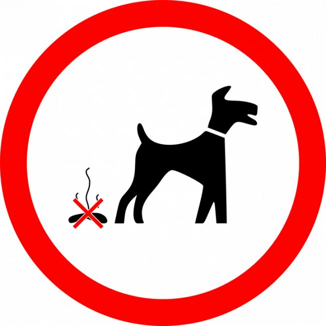 A crackdown on dog fouling has taken place this month